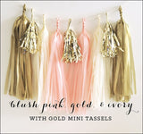 Blush Pink, Ivory And Gold Party Tassel Garland Kit - Jaclyn Peters Designs - 1