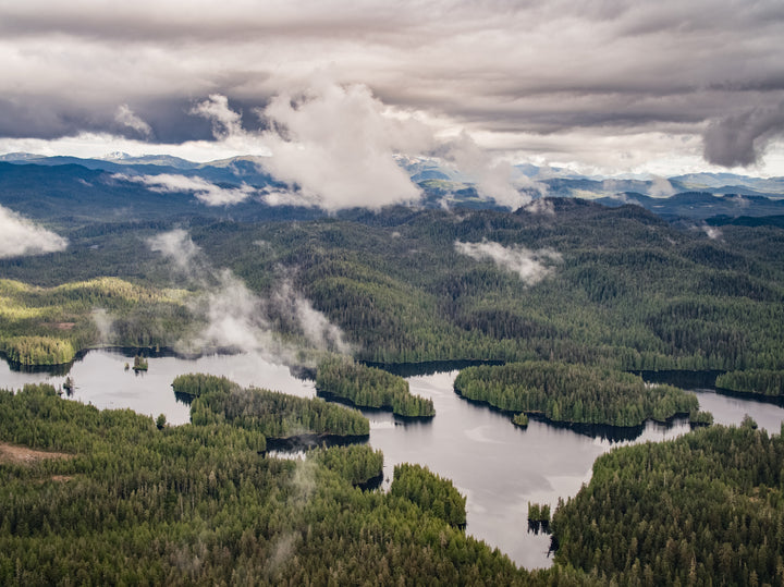 Save the Wild Beauty of the Tongass Rainforest