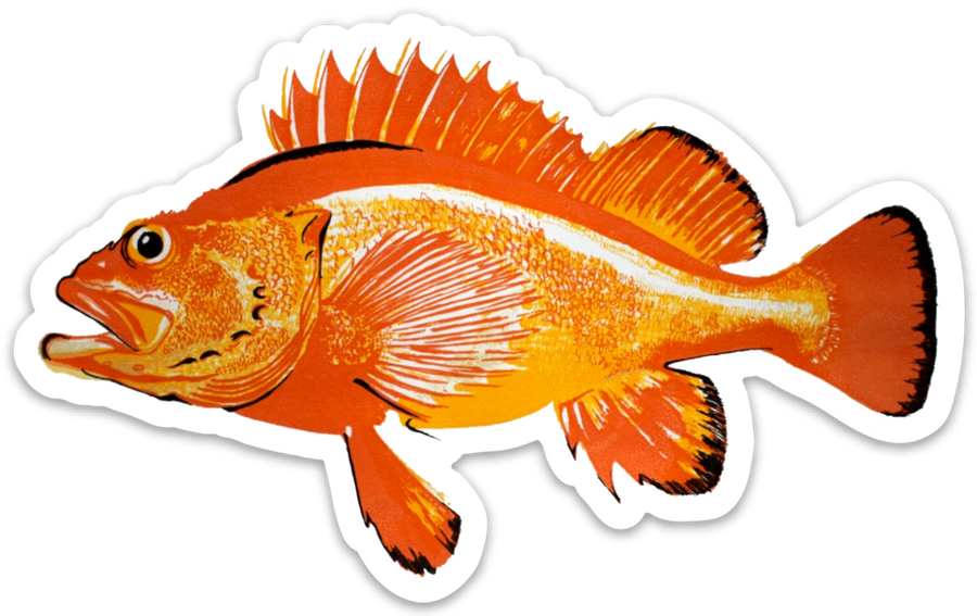 Rockfish Decal