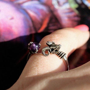 shot of a girl wearing the Skeletor havoc Ring in silver with a masters of the universe book