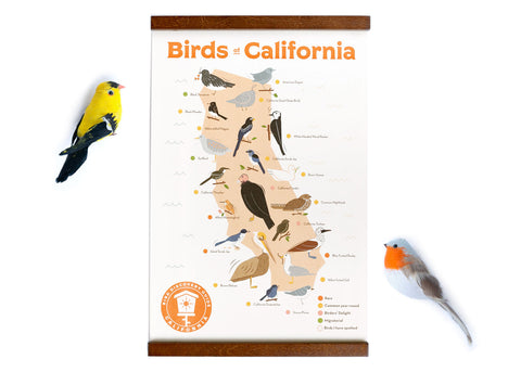 12x18 Birds of California Sticker Map