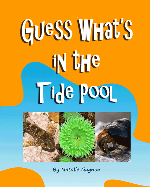 Guess What's In the Tide Pool