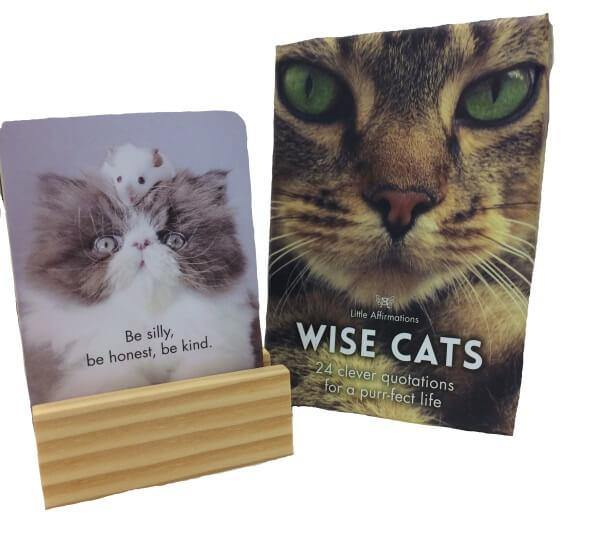 Little Affirmations - Wise Cats