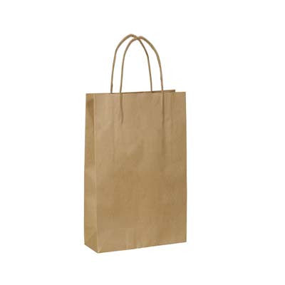 Kraft paper bags with handles (10 ct)