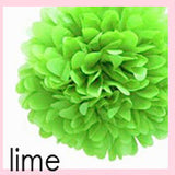 Tissue Pom Poms - 14 inches (click for more colors)