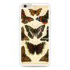 Vintage French Butterflies iPhone 6 Plus | 6s Plus case
