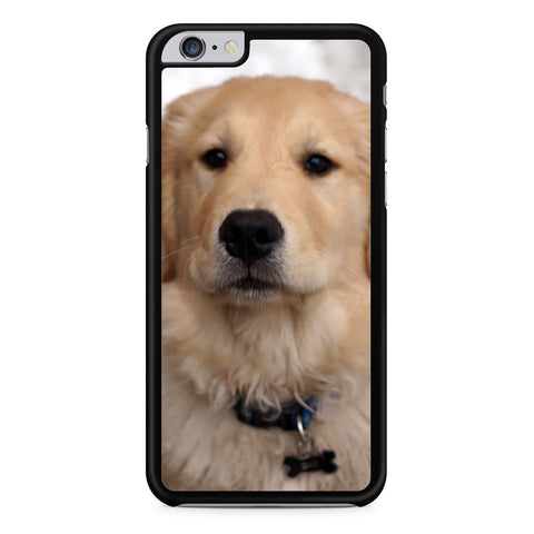 Cute Golden Retriever Dog iPhone 6 Plus 6s Plus case