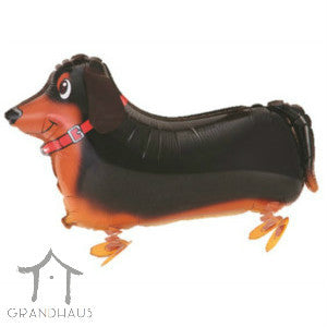 Pet Sausage Dog