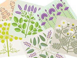 Gillian Blease Herb coasters by Jenny Duff