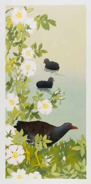 Lombard Street Gallery Margate Laura Boswell Jay Autumn Leaves limited edition reduction linocut print Moorhen among Dog Roses