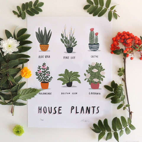 House Plants print by Alex Foster (Limited Edition Print)