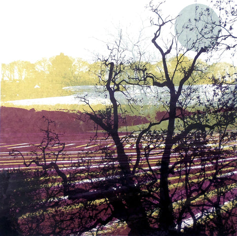 Moonlit Furrows at Stalisfield by Ruth McDonald (Limited Edition Print)
