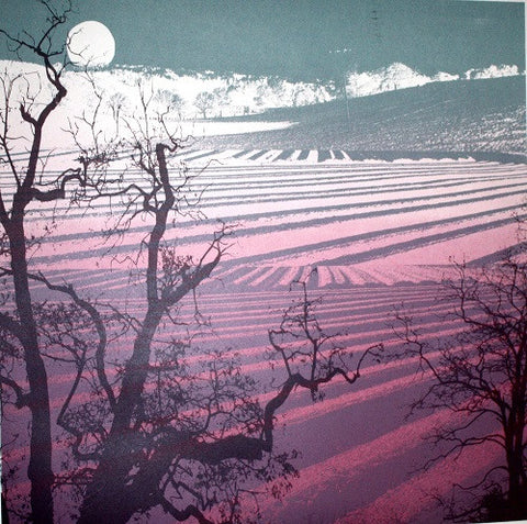 Nocturnal Furrows by Ruth McDonald (Limited Edition Print)