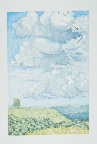 Twelve Views: Kites Off Beacon Hill by Laura Boswell (Limited Edition Japanese Waterbased Woodblock Print)