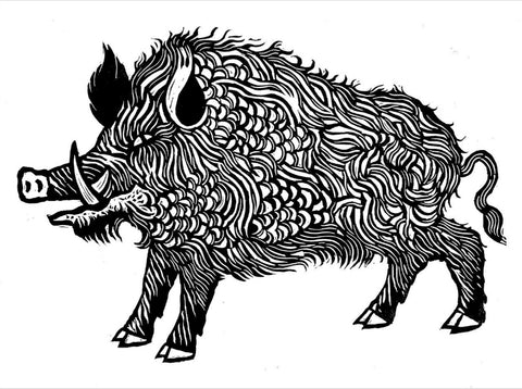 Wild Boar by Hugh Ribbans (Limited Edition Print)