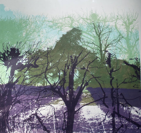 Woodland Perspective by Ruth McDonald (Limited Edition Print)