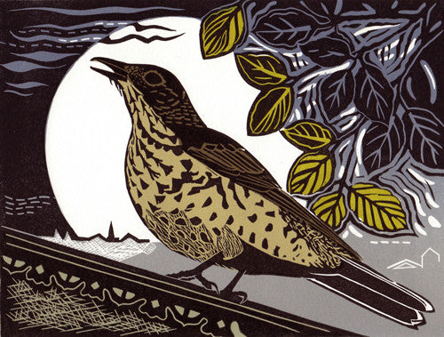 Lombard Street Gallery Margate Pam Grimmond Mistle Thrush Original hand printed limited edition linocut print