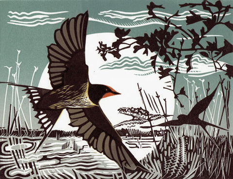 Swallows by Pam Grimmond (Limited Edition Print)