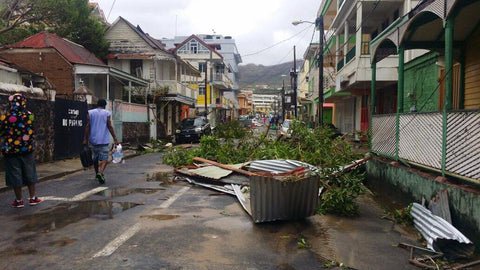Hurricane Maria Dominica Damage