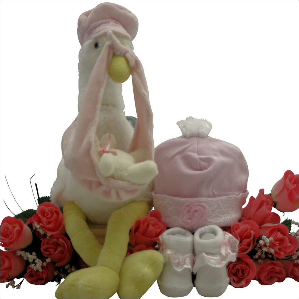 Special Delivery: Baby Girl Gift Set