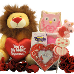 You're My MANE Squeeze: Valentine's Day Gift for Kids