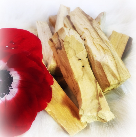 Palo Santo Holy Wood for Smudging and Energy Clearing