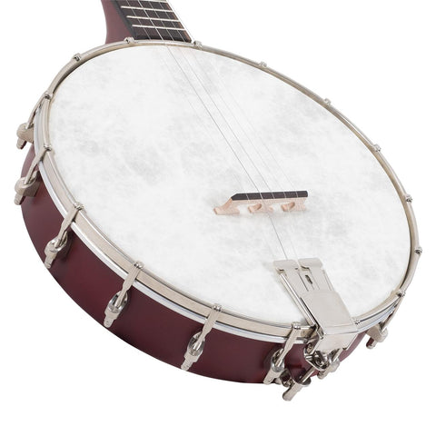 Recording King Dirty 30s Open Back Banjo