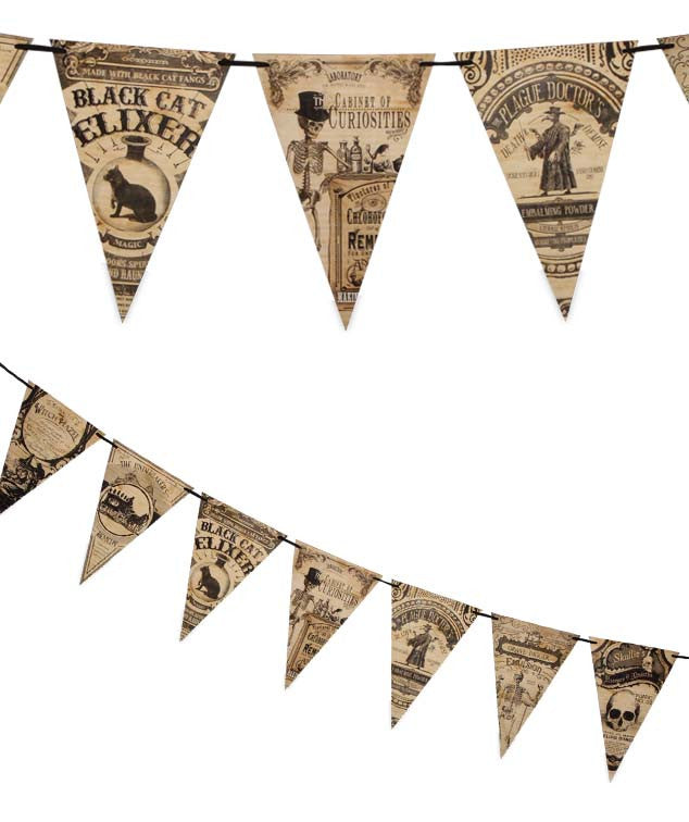 A Cabinet Of Curiosities Pennant Garland - Bethany Lowe