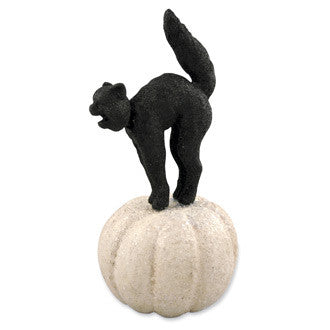 Black Cat Nodder on Pumpkin