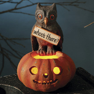 Hoot Owl on Jack O Lantern