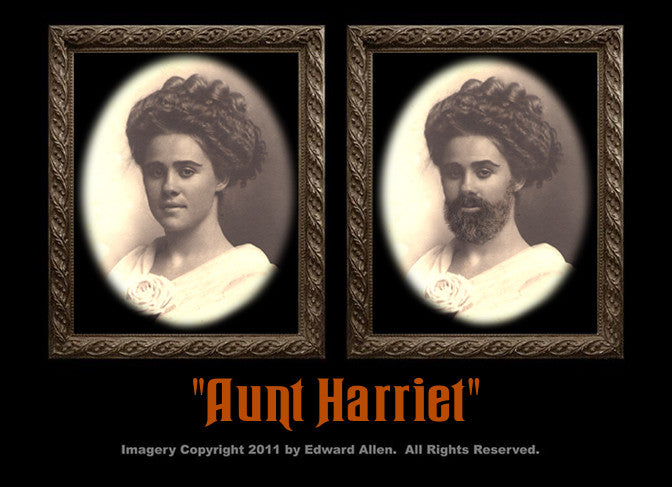 Aunt Harriet Changing Portrait