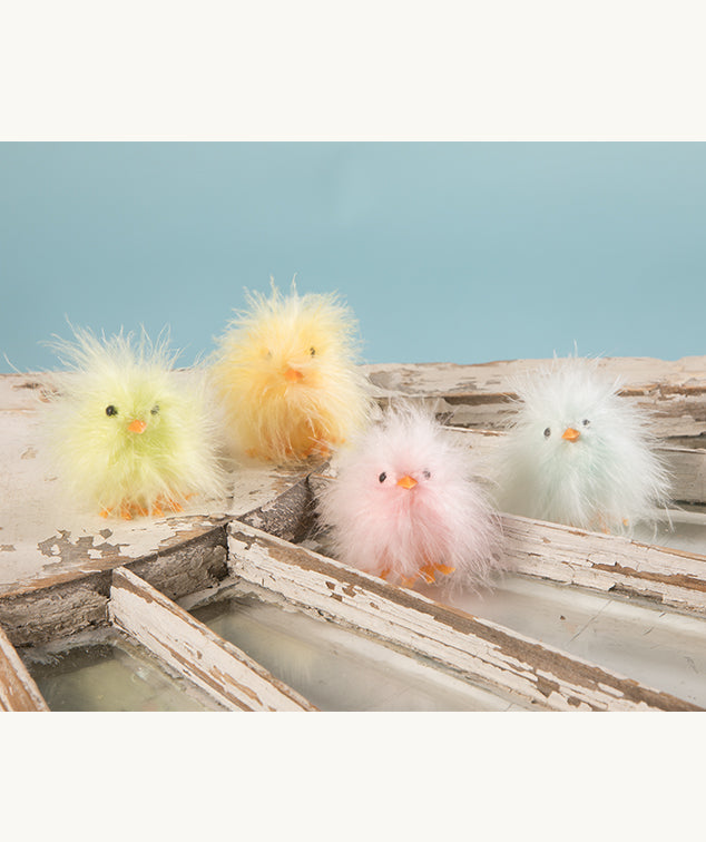 Mini Feather Fluffy Chicks