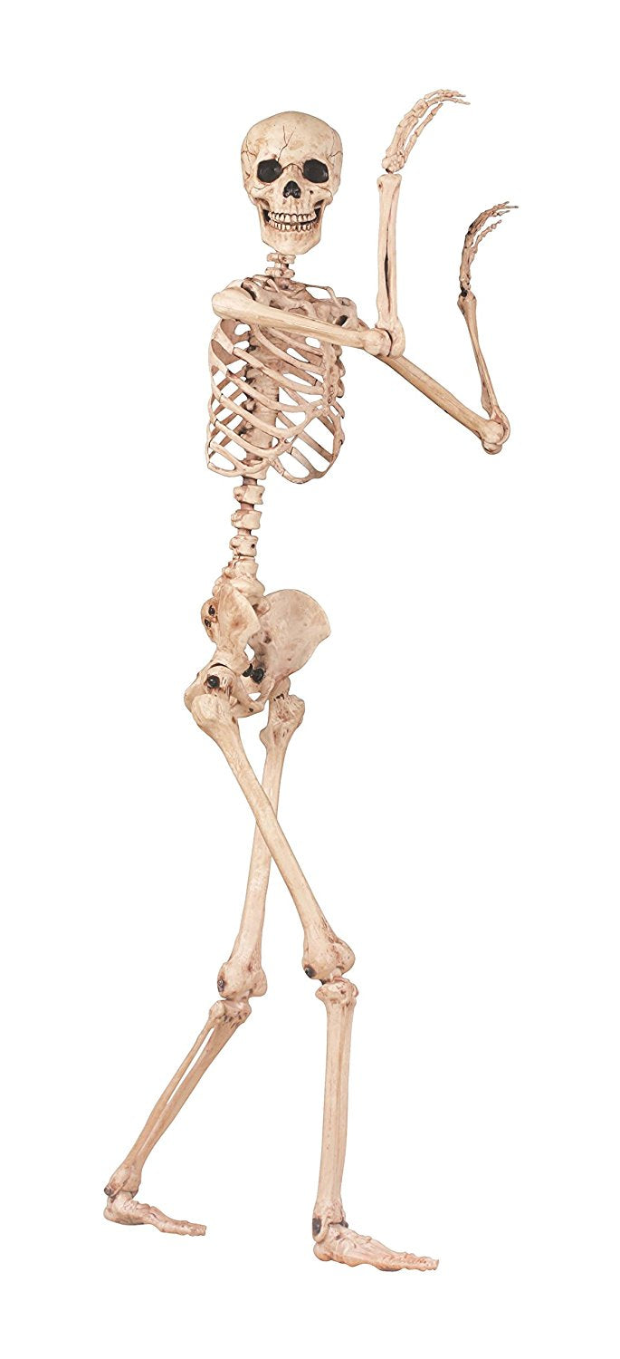 Poseable Skeleton Figure 5' Tall