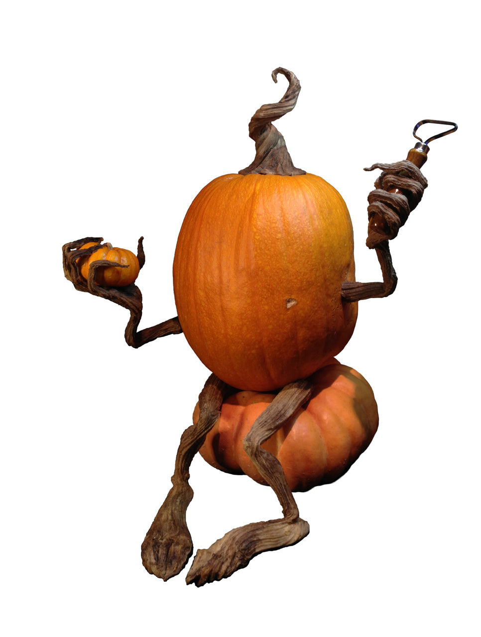 Poseable Pumpkin Vine Arms & Legs - Halloween Character