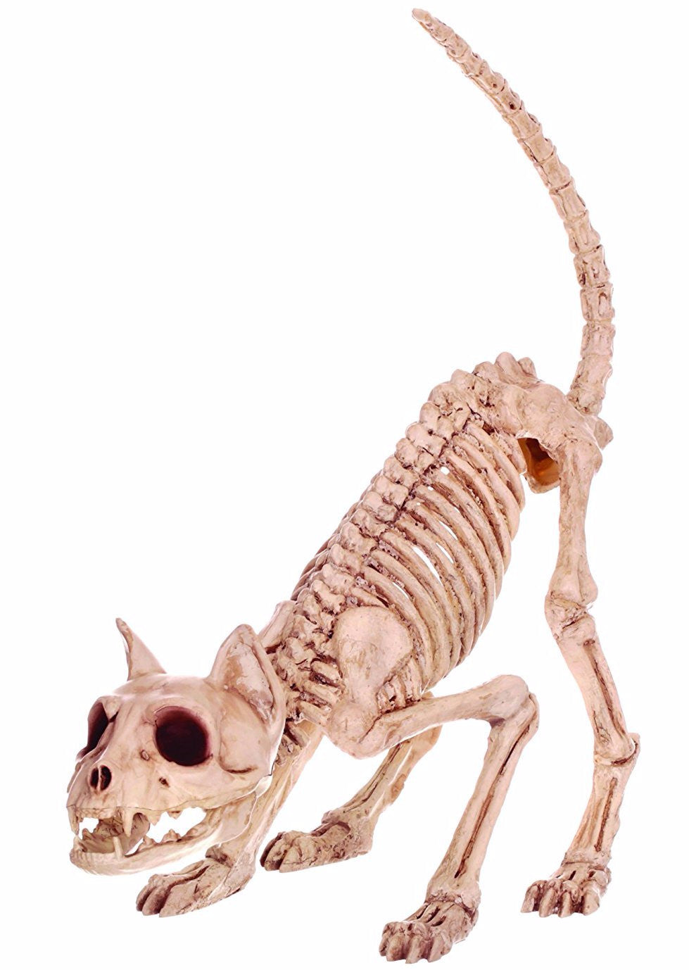 Kitty Cat Skeleton - Ready to Pounce