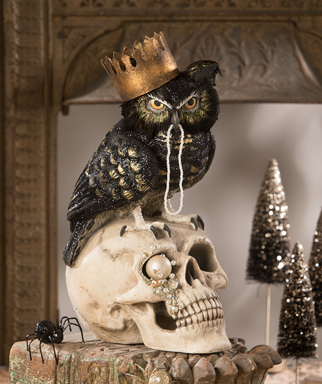 Sir Wingston Owl on Skull