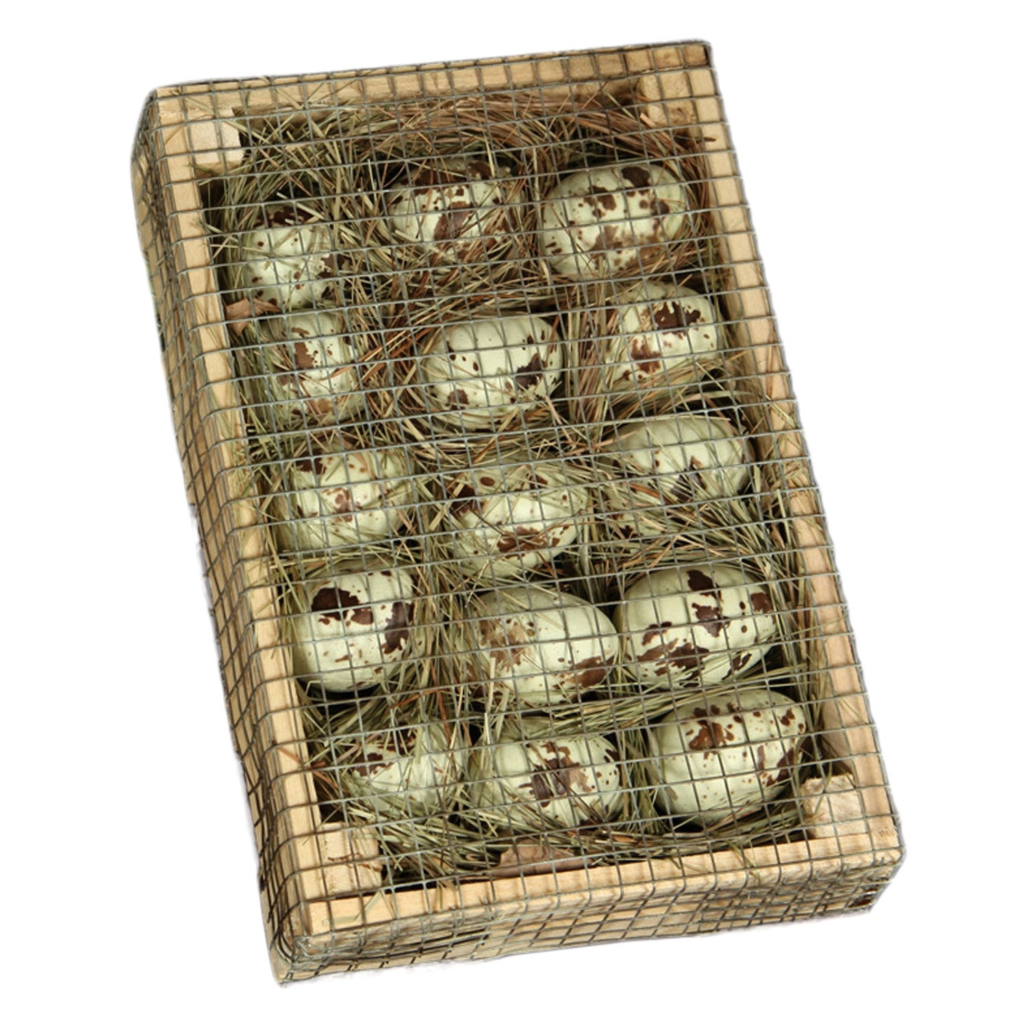 Egg Crate with Speckled Eggs