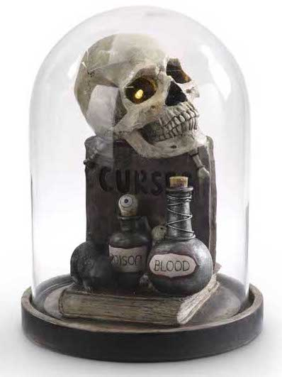 Skull Insdie Glass Cloche with Potion Bottles