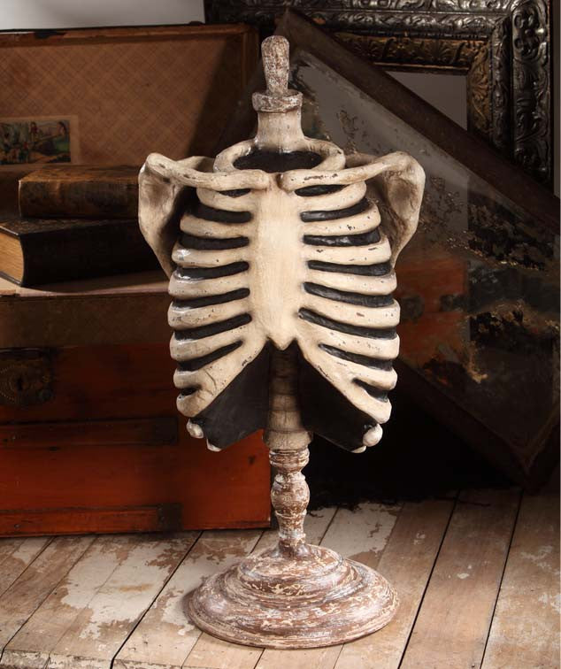 Bethany Lowe Skeleton Mannequin Halloween Display Prop