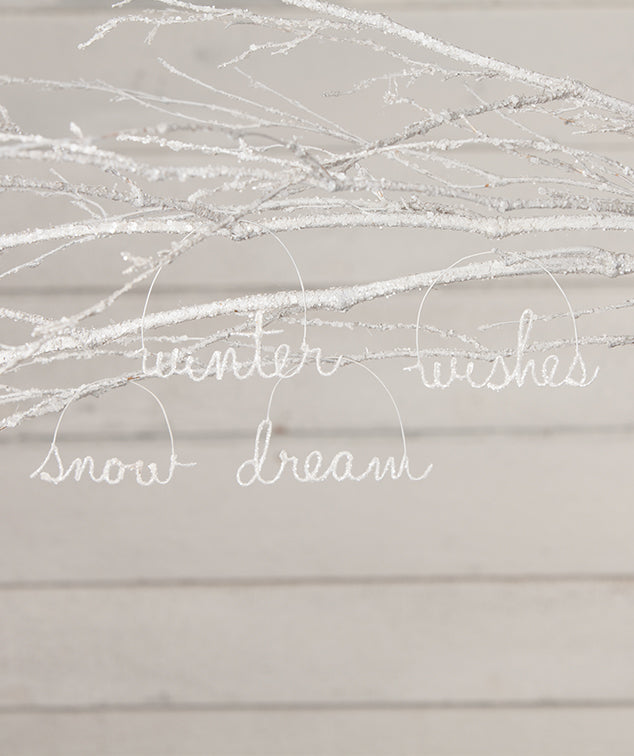 Winter Cursive Wire Word Ornaments