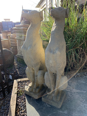 Pair Sitting Greyhounds Large