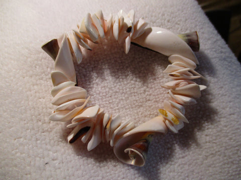 Stretchy Shell Bracelet (B526)
