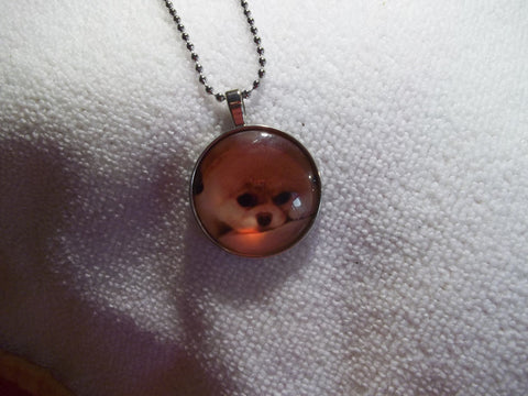 Silver Ball Chain Bubble Pomeranian Dog Necklace (N702)