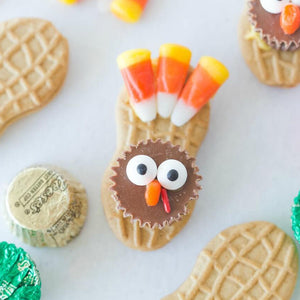 Terrific Turkey Craft for Kids