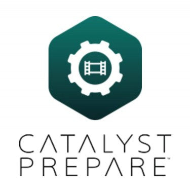 Catalyst Prepair