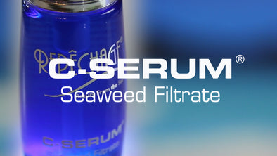 Product Spotlight: C-Serum® Seaweed Filtrate