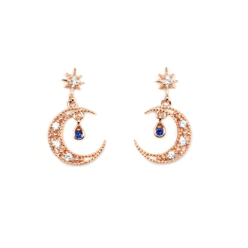 Sparkle Night Earring