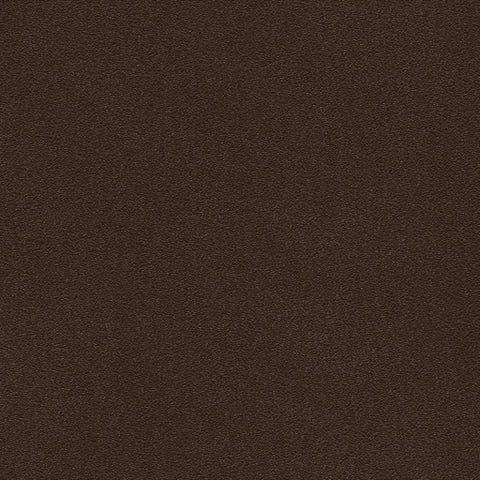 Belbien vinyl Sepia BC 039 Basic colors Rm wraps