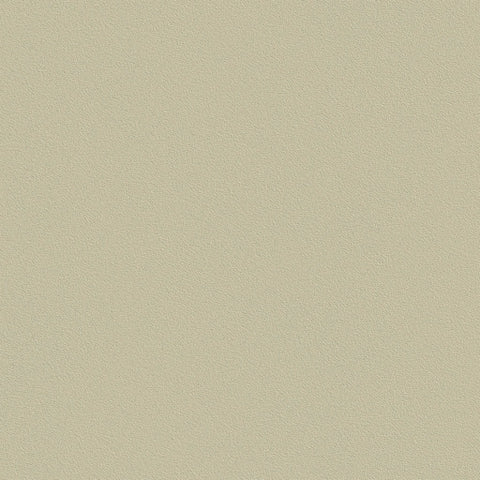 Belbien vinyl Ivory gray BC 043 Basic colors Rm wraps