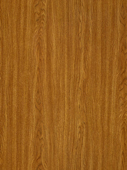 Belbien Vinyl EW 1201 Regal Oak
